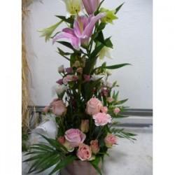 Hauteur Rose